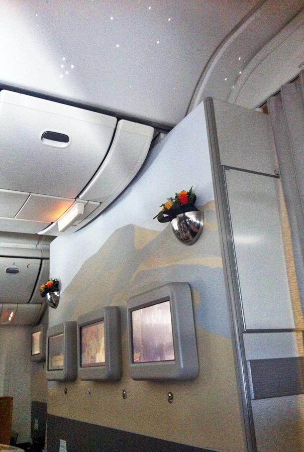 Emirates 777 Bulkhead